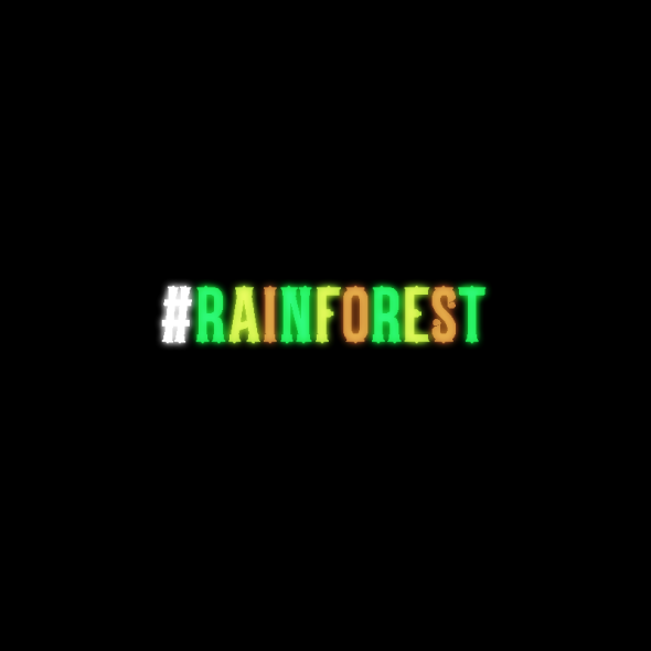 12_rainforest